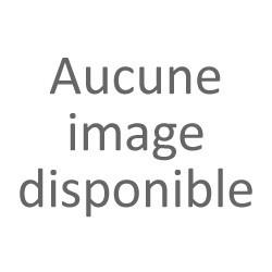 Accordeur CA 40 Korg